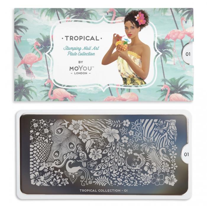 MoYou Tropical 01