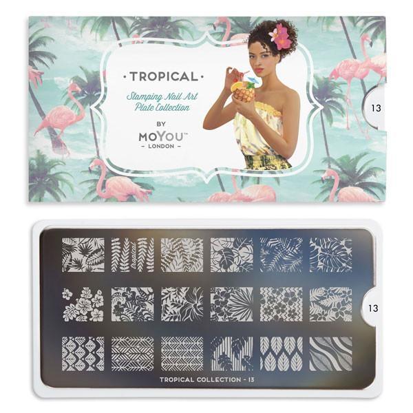 MoYou Tropical 13 1